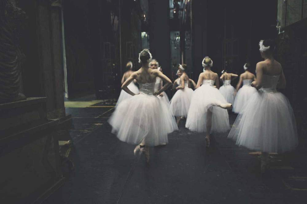 larlar-swan 03