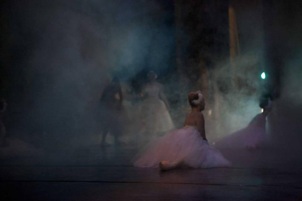 larlar-swan 04