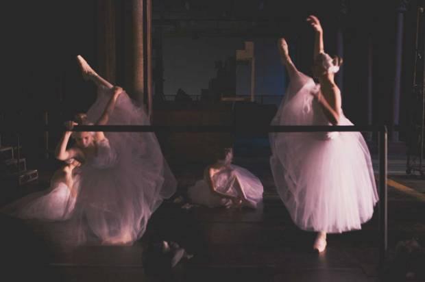 larlar-swan 05