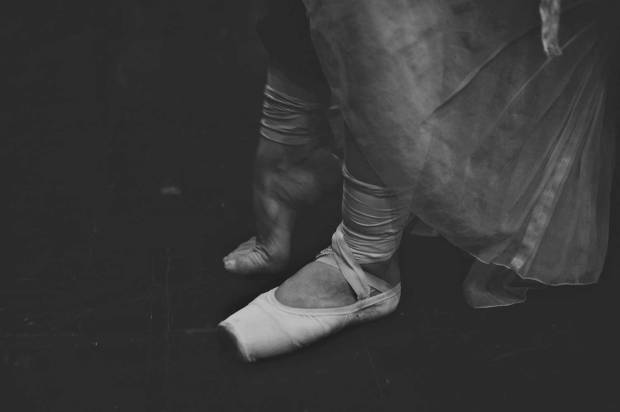 larlar-swan 10